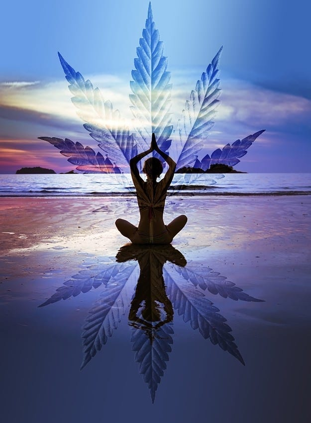 Enjoy some medicated yoga this 4/20 @ Venice Beach