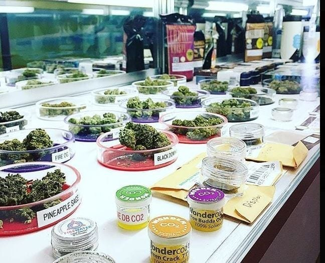 Inside The Santa Cruz Genetics Dispensary Display Case.