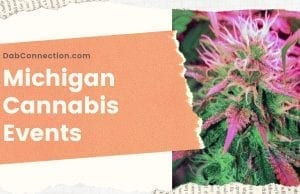 Cannabis Events in Michigan