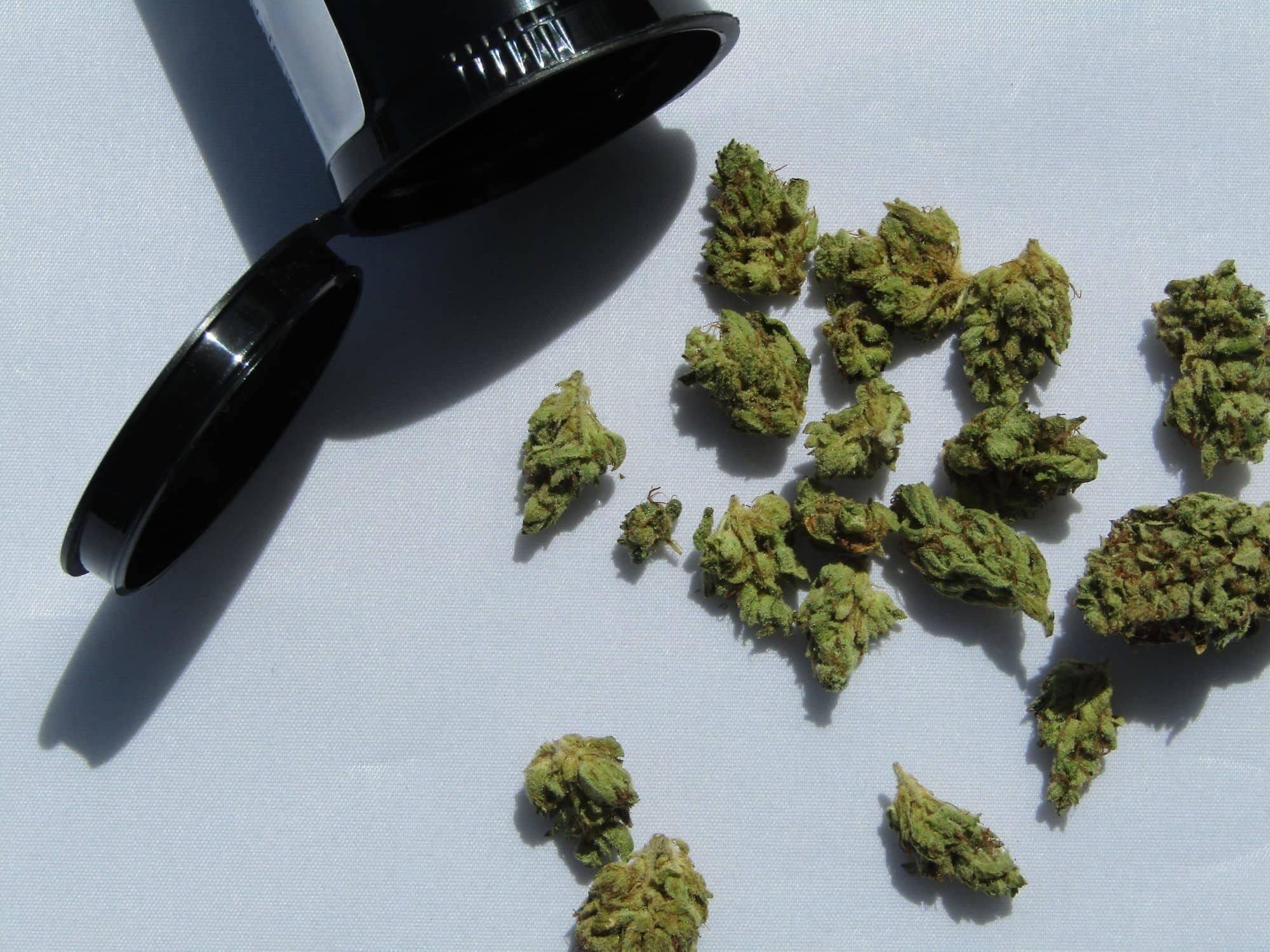 california medical cannabis marijuana law