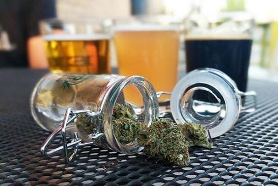 grow brewery cannabis themed tour my 420