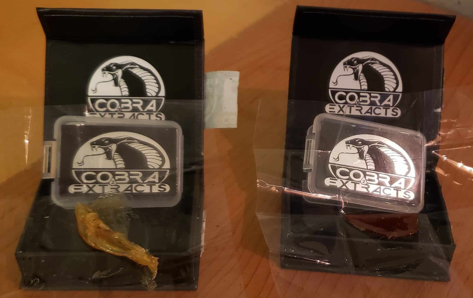 Cobra Extracts Shatter Quality