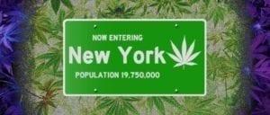 New York population cannabis sign