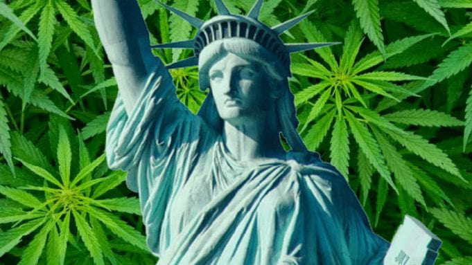 statue of liberty over fields of cannabis