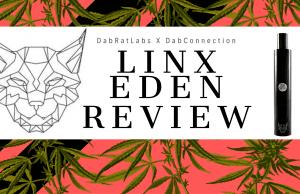 Linx Eden Review