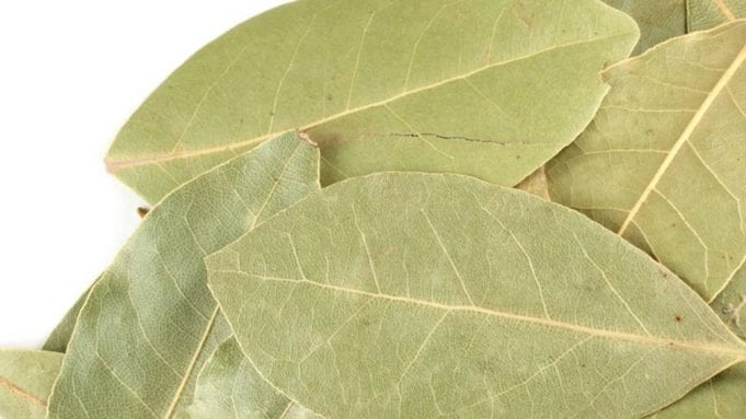 myrcene is also found in bay leaves