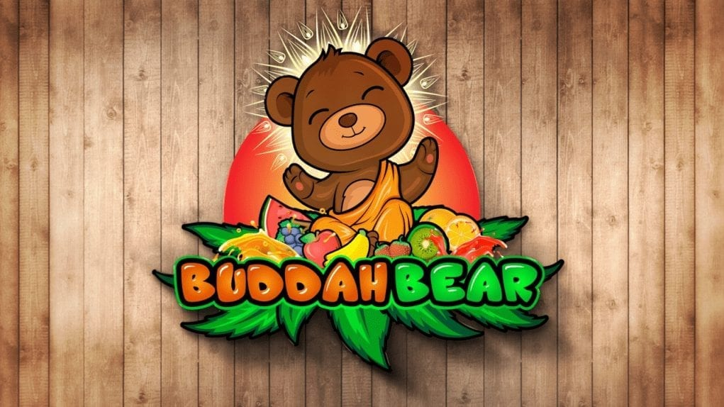 Buddah_Bear_sucks