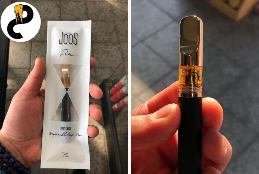 nature's grace joos disposable pen review