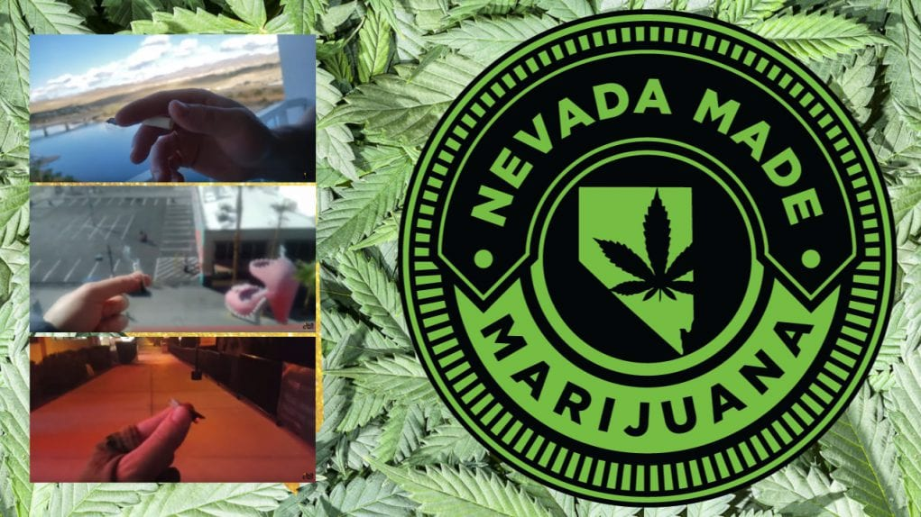 Nevada flower tour