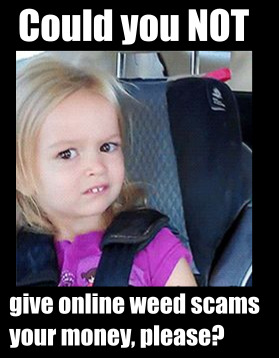 online_weed_scam_sites_could_you_not