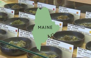 Maine_legalized_recreational_sales