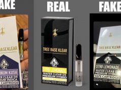 counterfeit_Tree_Base_Klear