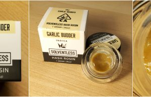 west coast cure hash rosin review