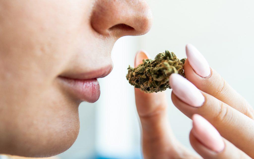 marijuana-smell