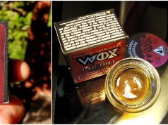 wox extracts review