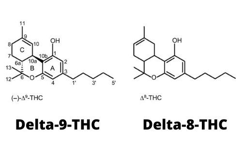 Delta-8-vs-Delta-9-THC