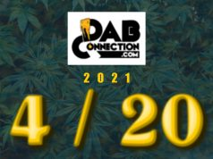 Dab_Connection_420-2021