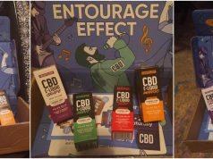entourage-effect-review-1536x591