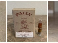 pally-carts-review-1099x420