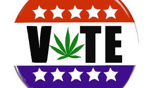 vote-weed