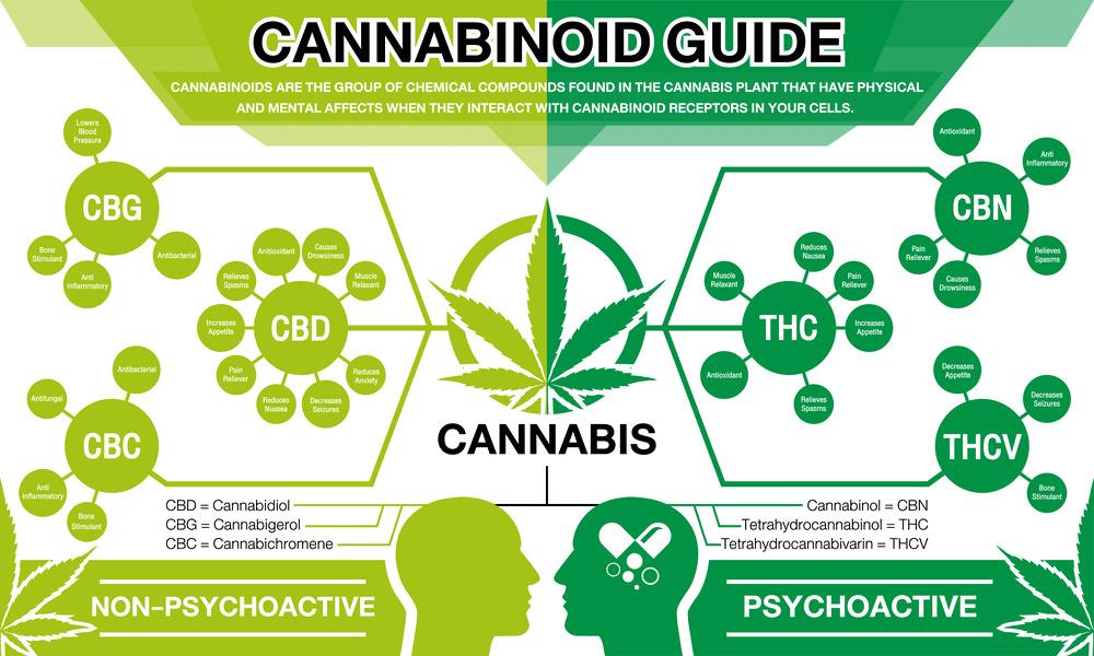 cannabinoid-family