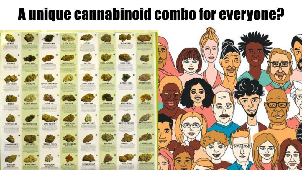 snowflake-cannabis-strains